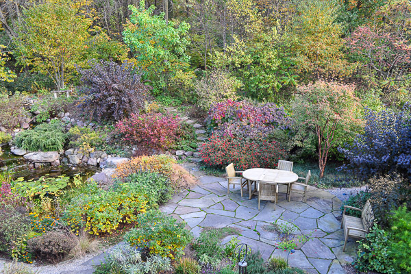 Dynamic color range of fall foliage of pond, patio, and woodland edge